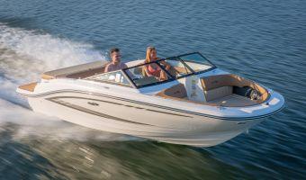 Bateau à moteur open Sea Ray 19 Spx à vendre