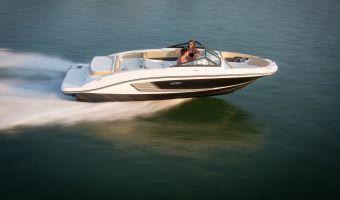 Bateau à moteur open Sea Ray 21 Spx à vendre
