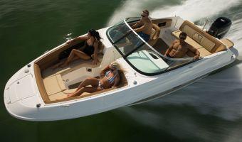 Bateau à moteur open Sea Ray 240 Sundeck Ob à vendre