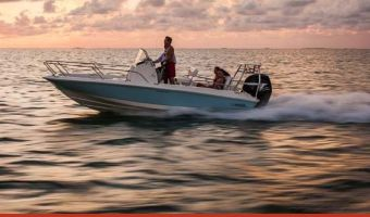 Open motorboot en roeiboot Boston Whaler 210 Dauntless eladó