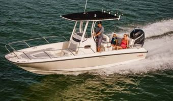 Open motorboot en roeiboot Boston Whaler 240 Dauntless eladó
