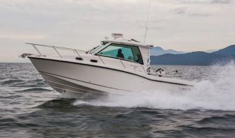 Моторная яхта Boston Whaler 315 Conquest Pilothouse для продажи