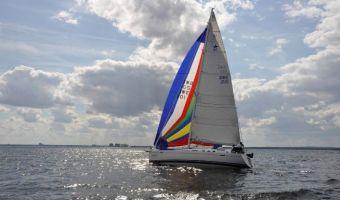Segelyacht Najad 415 Ac zu verkaufen