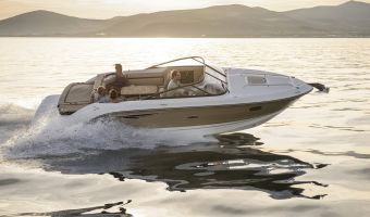 Bateau à moteur open Sea Ray Sun Sport 250 à vendre