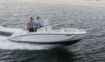 Speedbåd og sport cruiser  Yamaha Jetboot 210fsh til salg