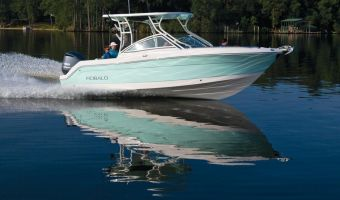 Speedboat and sport cruiser Robalo Dual Console R247 for sale