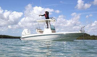 Speed- en sportboten Boston Whaler 240 Dauntless Pro eladó