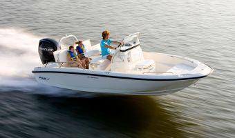 Speedbåd og sport cruiser  Boston Whaler 180 Dauntless til salg
