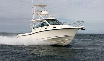 Speed- en sportboten Boston Whaler 345 Conquest eladó