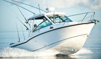Speed- en sportboten Boston Whaler 285 Conquest eladó