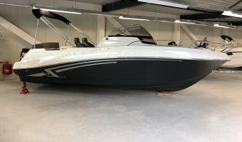 Быстроходный катер и спорт-крейсер Prins 625 Sundeck Vanaf €20.995,00 для продажи