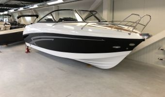 Быстроходный катер и спорт-крейсер Prins 580 Cabin Vanaf €22.495 для продажи