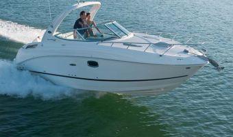 Bateau à moteur open Sea Ray 260 Sundancer à vendre