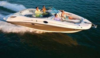 Bateau à moteur open Sea Ray 300 Sundeck à vendre