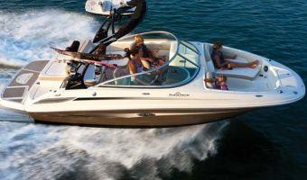 Bateau à moteur open Sea Ray 220 Sundeck à vendre