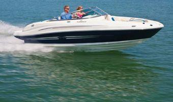 Bateau à moteur open Sea Ray 200 Sundeck à vendre