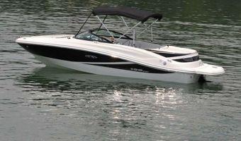 Bateau à moteur open Sea Ray 190 Sport à vendre