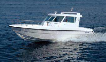 Bateau à moteur Silvercraft 31 Ht à vendre