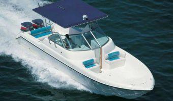 Motor Yacht Silvercraft 31 til salg