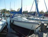 Contest 25, Sejl Yacht Contest 25 til salg af  At Sea Yachting