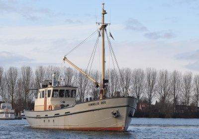 Ex-visserij-inspectieschip CORNELIS BOS, Ex-professionele motorboot