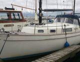 Hallberg Rassy 35 Rasmus, Парусная яхта Hallberg Rassy 35 Rasmus для продажи Noord 9 Jachtmakelaars