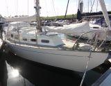 Trintella 2A, Barca a vela Trintella 2A in vendita da Particuliere verkoper