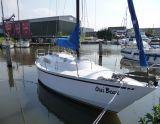Wibo 945, Barca a vela Wibo 945 in vendita da Particuliere verkoper