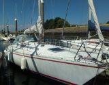 BARBERIS Show 34, Barca a vela BARBERIS Show 34 in vendita da Particuliere verkoper
