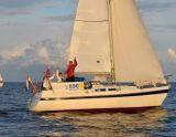 Contest 28, Sejl Yacht Contest 28 til salg af  Particuliere verkoper