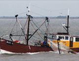 Alphen A/d Rijn IJsselmeerkotter, Barca di lavoro Alphen A/d Rijn IJsselmeerkotter in vendita da Particuliere verkoper