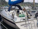 Westerly Storm 33 Jubilee, Парусная яхта Westerly Storm 33 Jubilee для продажи Siepel Watersport
