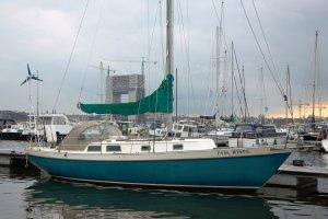 Niagara 35, Zeiljacht Niagara 35 te koop bij Amsterdam Nautic