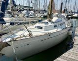 Camper & nicholson Nicholson 35, Segelyacht Camper & nicholson Nicholson 35 Zu verkaufen durch Lighthouse Boating