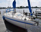 Comfortina 32, Sejl Yacht Comfortina 32 til salg af  Sealion Yachts