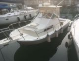 Boston Whaler 27 WALK AROUND, Motoryacht Boston Whaler 27 WALK AROUND in vendita da Nautigamma S.A.S. Di Dal Mas Antonio & C