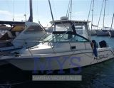 Robalo ROBALO 2640, Motoryacht Robalo ROBALO 2640 Zu verkaufen durch Marina Yacht Sales
