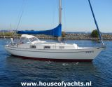 Hallberg Rassy 31 Monsun, Voilier Hallberg Rassy 31 Monsun à vendre par House of Yachts BV