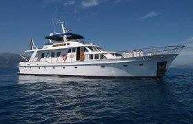 Lowland Beeldsnijder 2360 for sale by YachtBid