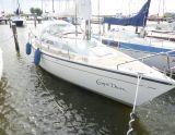 Dehler Dehlya 25, Парусная яхта Dehler Dehlya 25 для продажи Jachtmakelaar Monnickendam