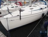 Bavaria 37 Cruiser, Segelyacht Bavaria 37 Cruiser Zu verkaufen durch Yacht Center Club Network