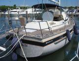 IRWIN YACHT IRWIN 38/40, Barca a vela IRWIN YACHT IRWIN 38/40 in vendita da Yacht Center Club Network