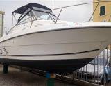 Robalo ROBALO 2440, Motor Yacht Robalo ROBALO 2440 til salg af  Yacht Center Club Network