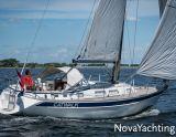 Hallberg-Rassy 34, Sejl Yacht Hallberg-Rassy 34 til salg af  NovaYachting