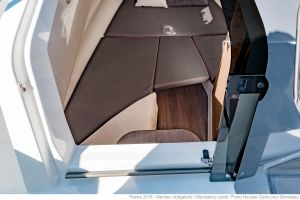Beneteau Flyer 8.8 Outboard Photo 5