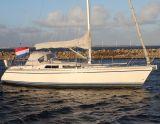 Comfortina 35, Sejl Yacht Comfortina 35 til salg af  NovaYachting
