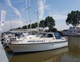 Albin 30, Bateau à moteur Albin 30 à vendre par Bach Yachting