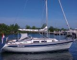 Hallberg Rassy 31, Segelyacht Hallberg Rassy 31 Zu verkaufen durch Yachting Company Muiderzand