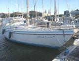 Contest 31 HT, Segelyacht Contest 31 HT Zu verkaufen durch Amsterdam Andijk Yachting