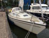 Dehler 31 TOP NOVA, Парусная яхта Dehler 31 TOP NOVA для продажи Rob Krijgsman Watersport BV